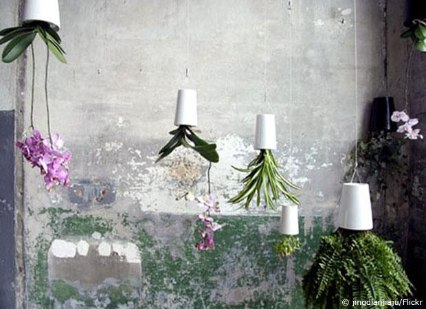 flowerbox pflanzenbilder f r die wand wohnen hausxxl. Black Bedroom Furniture Sets. Home Design Ideas