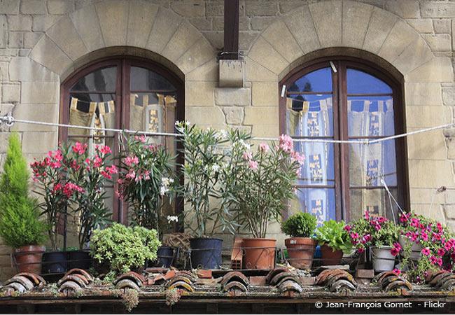 urbaner Gartenbau in einer Großstadt