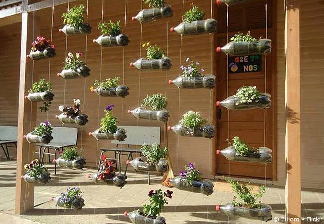 Plastikflaschen als vertical Gardening