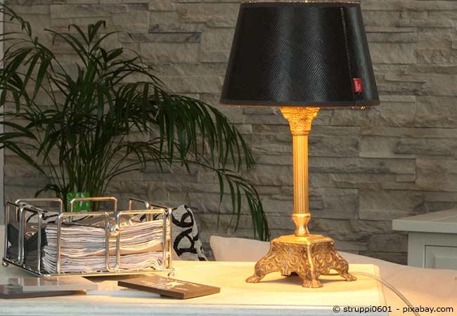 hello darkness die richtigen zimmerpflanzen bei wenig licht wohnen hausxxl wohnen hausxxl. Black Bedroom Furniture Sets. Home Design Ideas