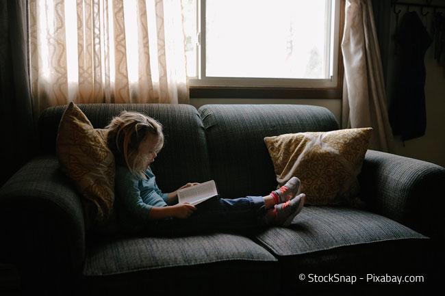 Ein Schlafsofa als gemütliche Leseecke
