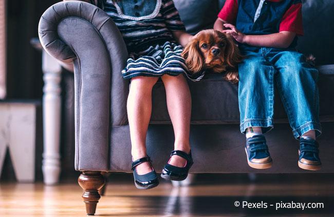 Wird die Couch oft benutzt, sollten Sie ein robustes Material wählen