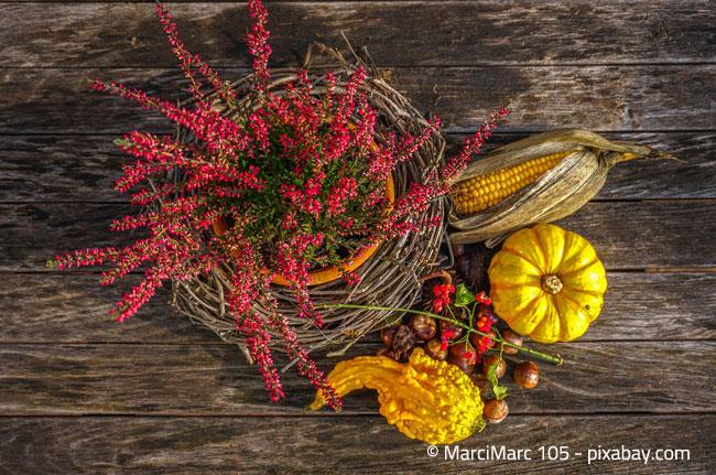 Geschmackvolle Tischdeko: Heidekraut und herbstliche Elemente