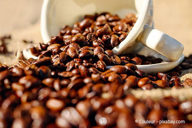 Kaffeebohnen sind ein gutes Hausmittel, um schlechte Gerüche im Kühlschrank zu vertreiben