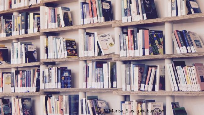 Wer viele Bücher besitzt, benötigt ein entsprechend großes Regal.