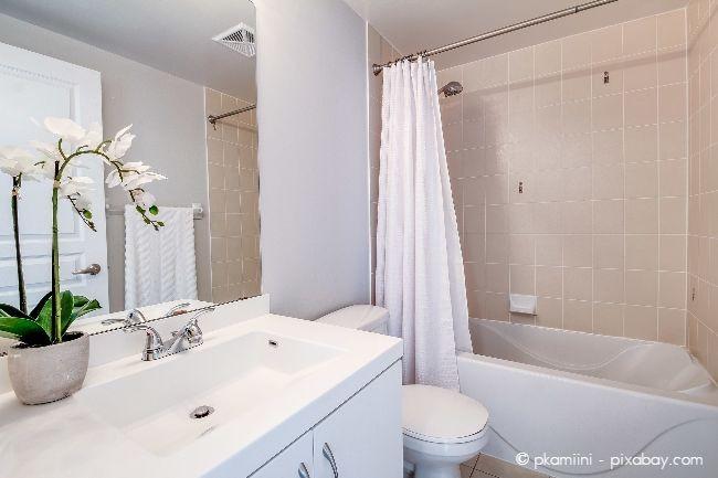 Auch helle Farben und Pflanzen passen perfekt in ein Badezimmer nach Feng Shui.