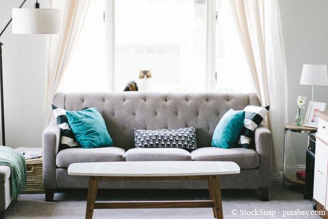 Ganz wichtig: Flecken auf Polstermöbeln sollten Sie möglichst immer sofort entfernen.