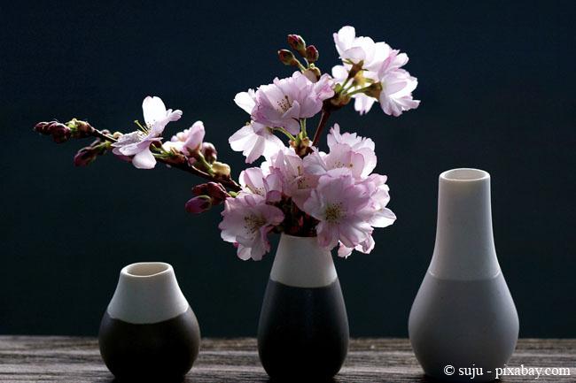 Vasen sind zu jeder Jahreszeit eine schöne Möglichkeit zur Dekoration.